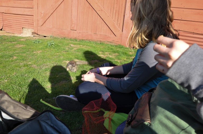 Emily feeding the ground squirrel.