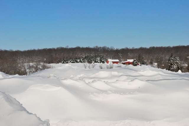 A lot of snow
