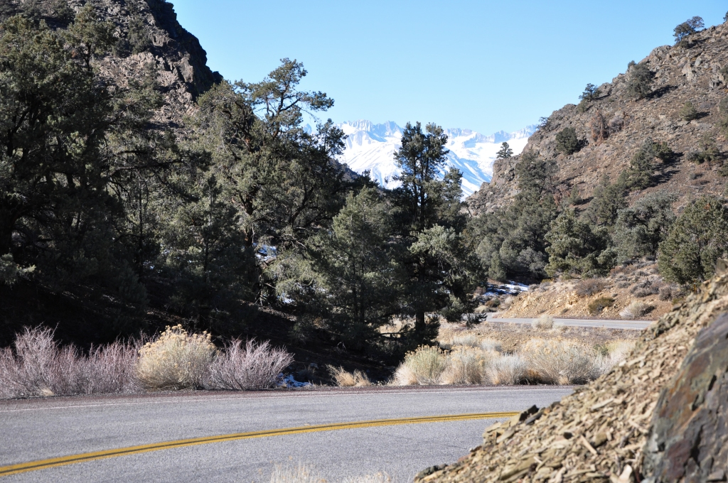 Route 168 through the pass to Route 395. The pass is a challenge to drive but beautiful at every turn.