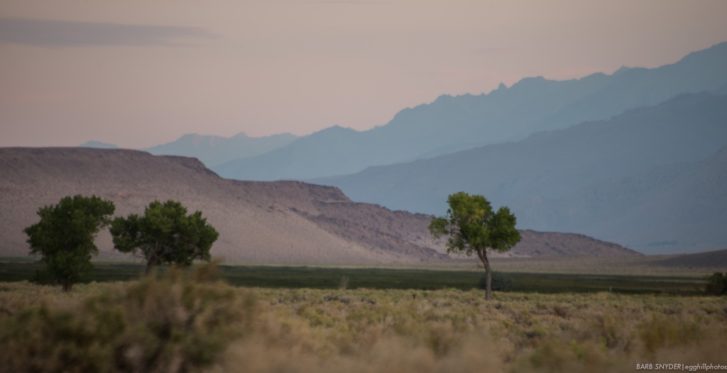 Looking south, the brown wall is one of the last walls of pumice and dust that was blown by the volcano 35 miles north.