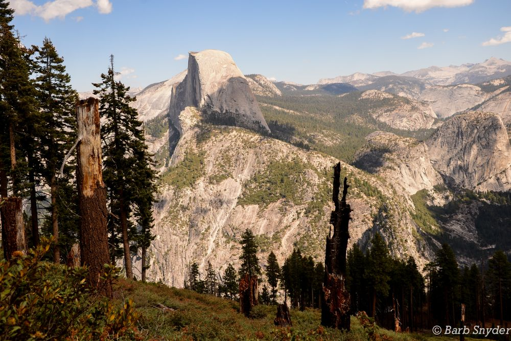 Yosemite! (5/6)