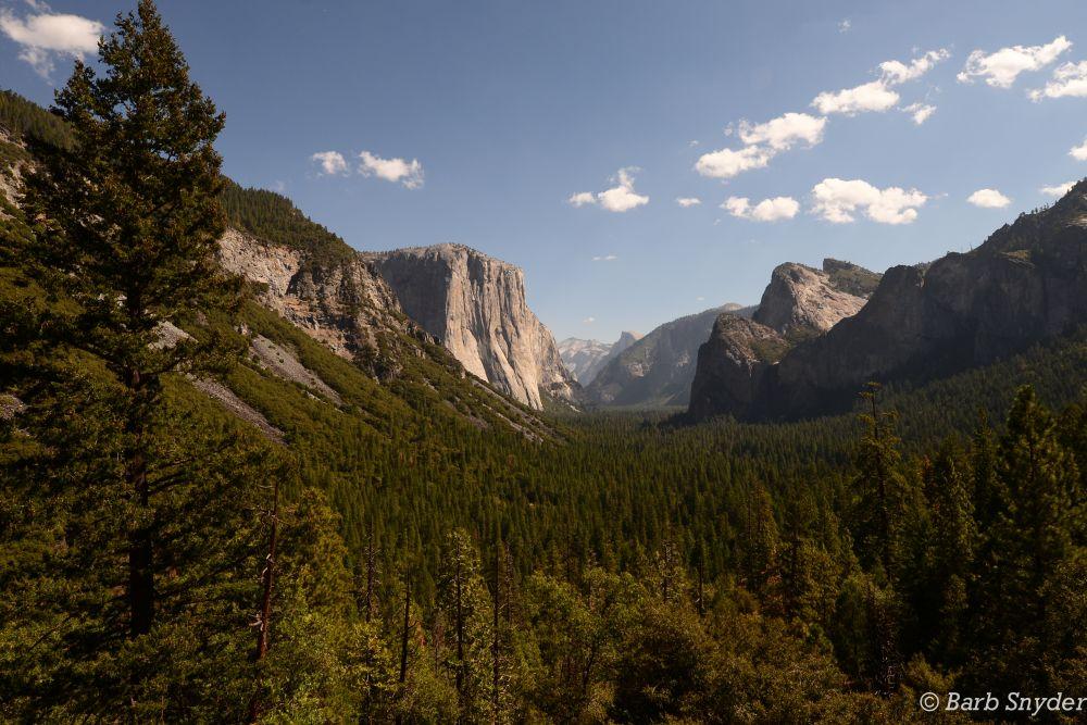 Yosemite! (3/6)