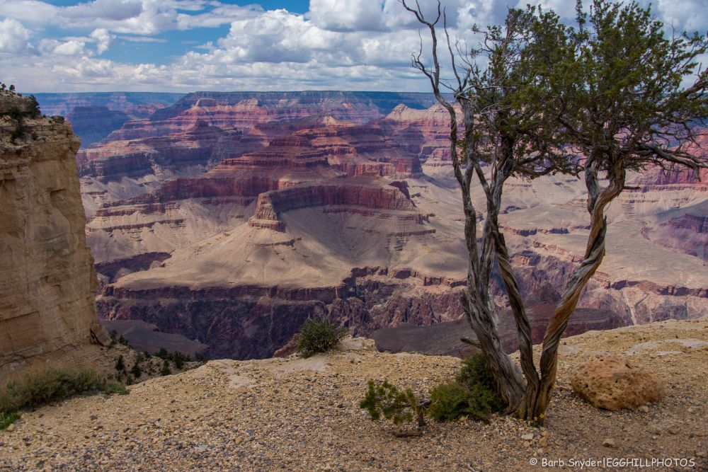 Grand Canyon (2/6)
