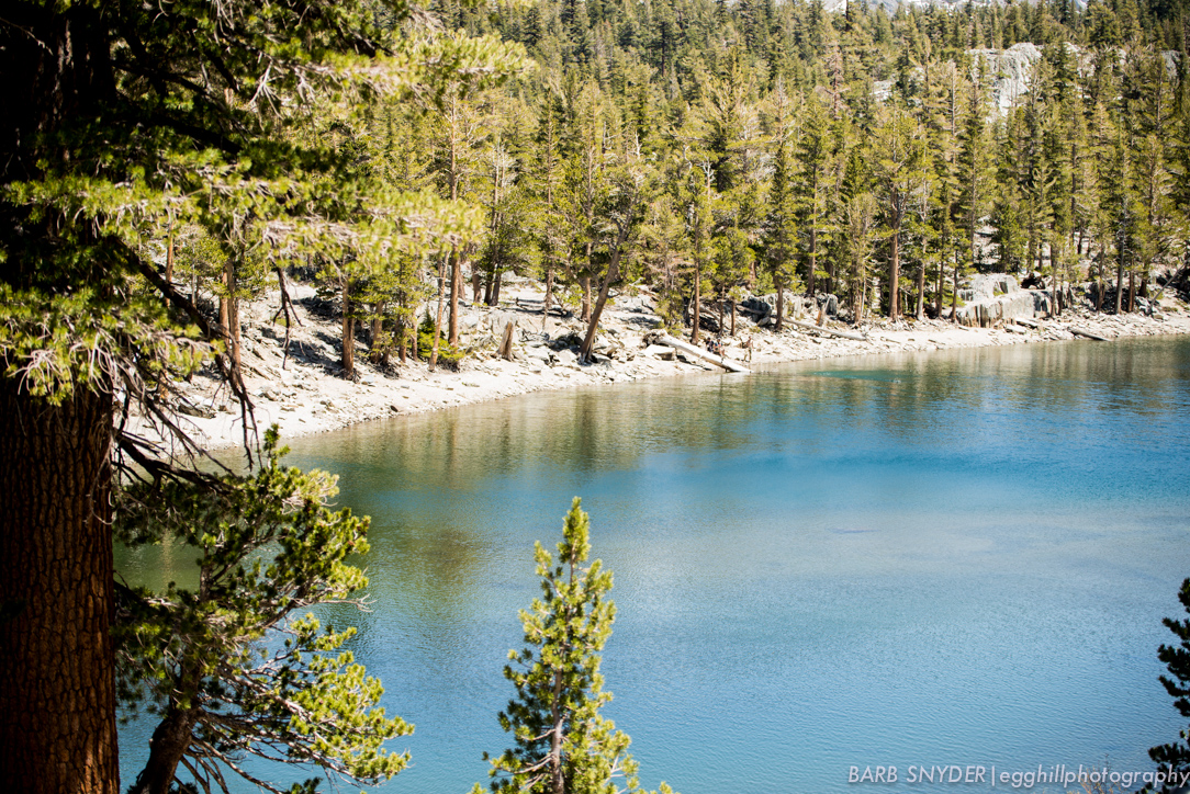 Barrett Lake (1 of 1)