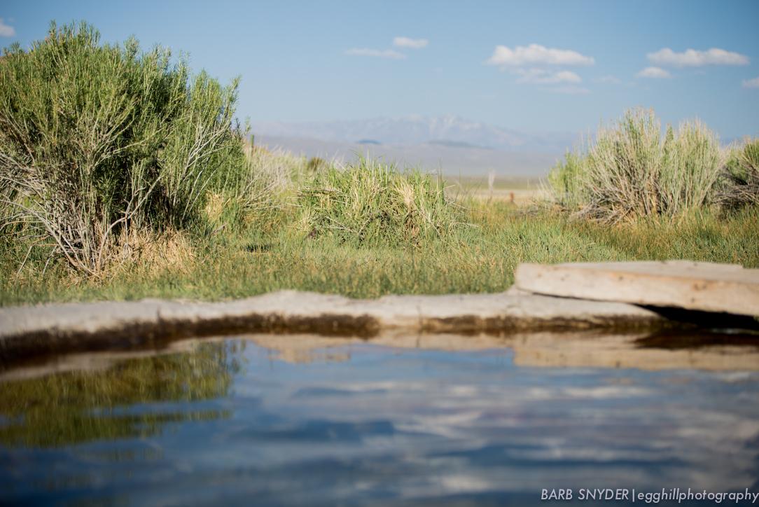 Hot Springs (1 of 1)