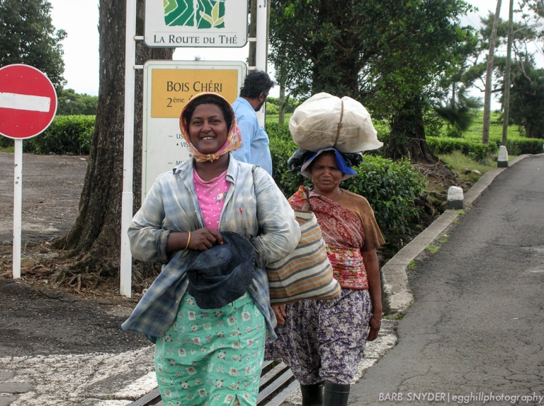 These tea pickers were finished for the day and were on their way home, not minding at all as I snapped their photo.
