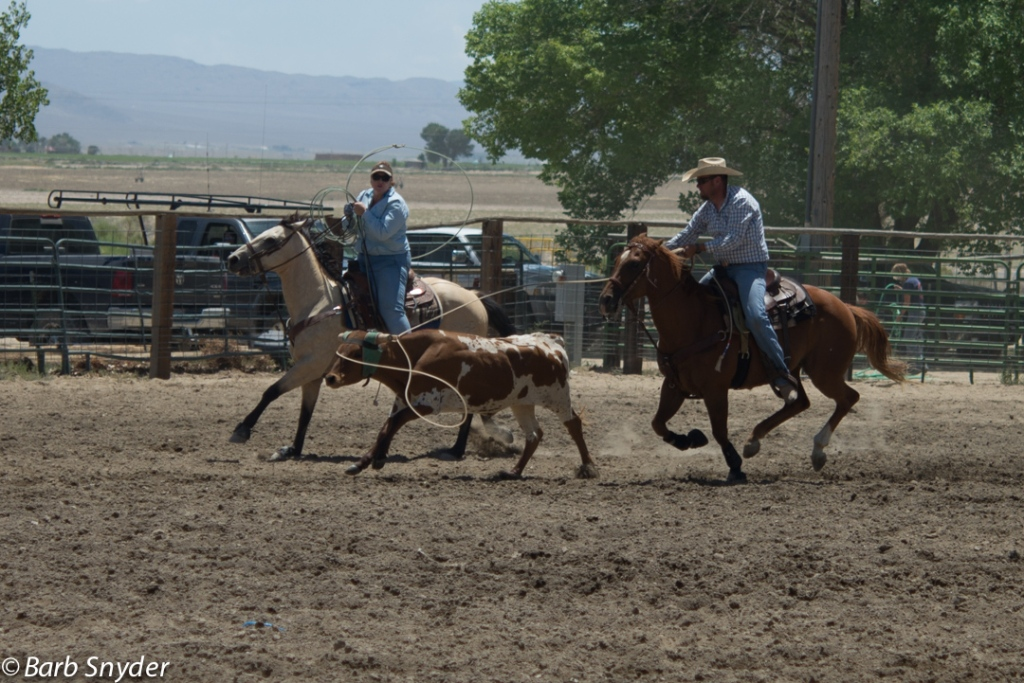 This pair roped their steer. It's often a cowgirl and cowboy team.