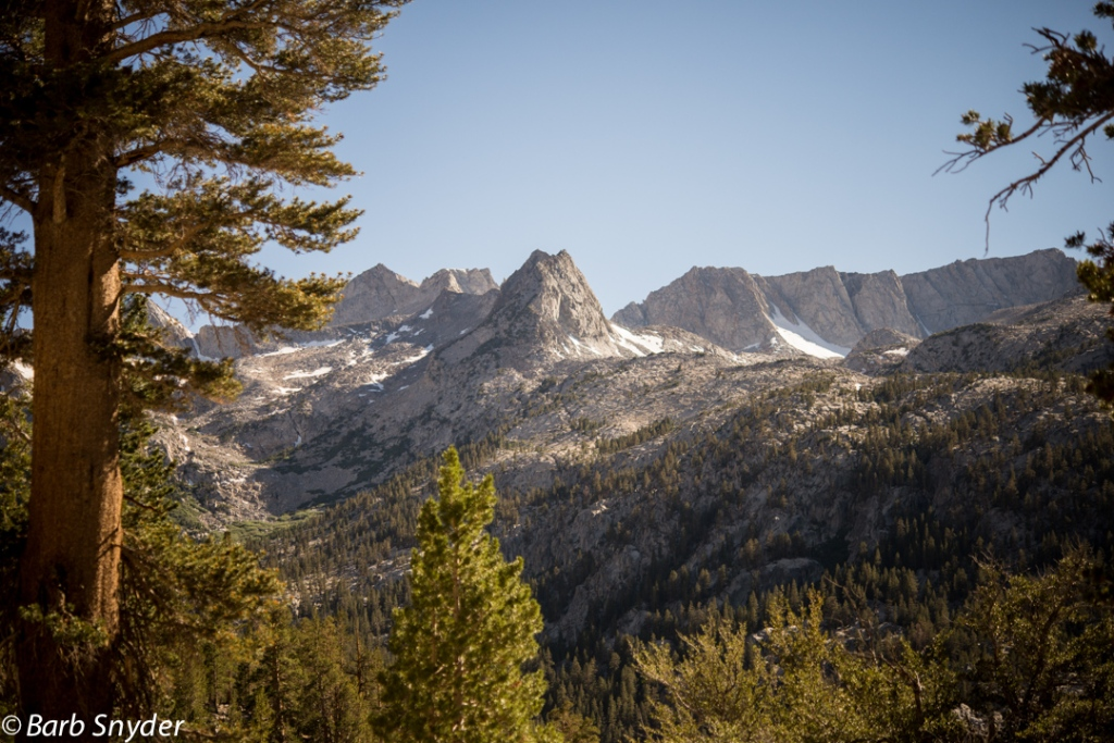 The Pacific Crest Trail is up amoung the snow patches.
