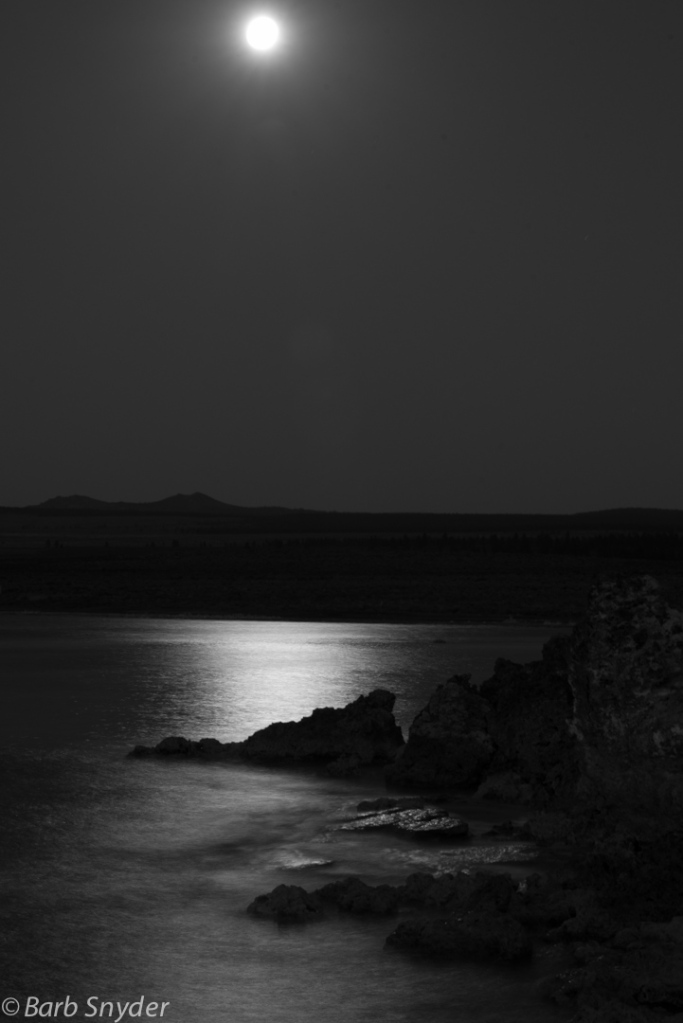 Moon shine in black and white.