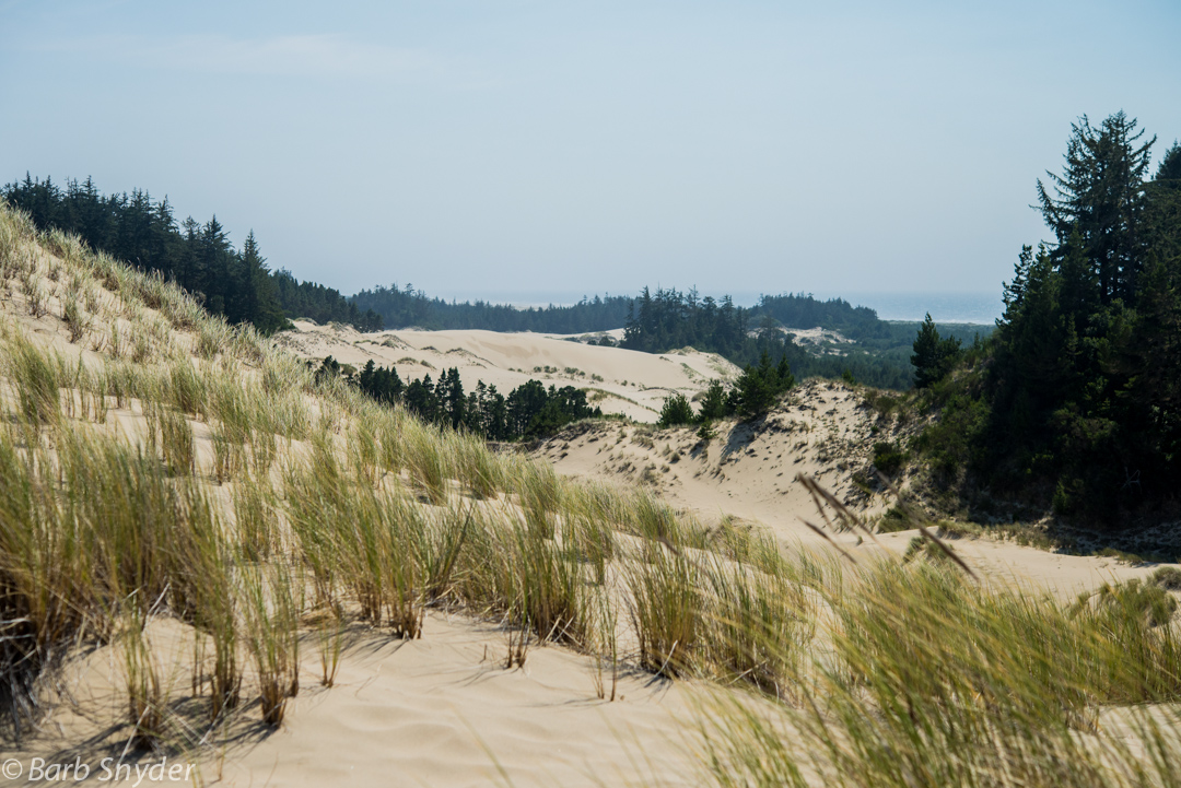 The dunes were wide and high and hot.