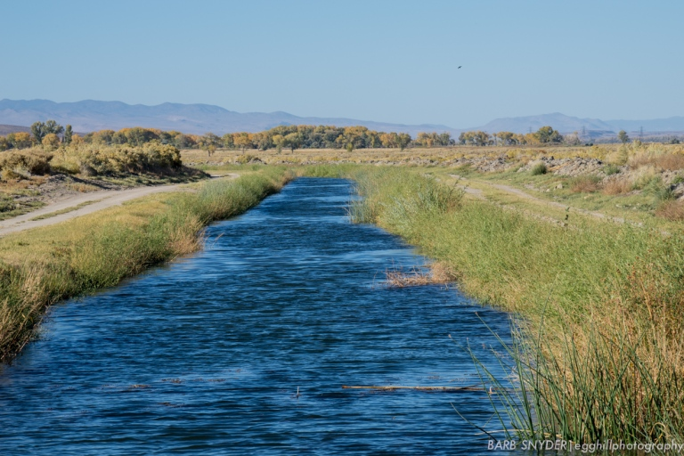 Owens River Canal