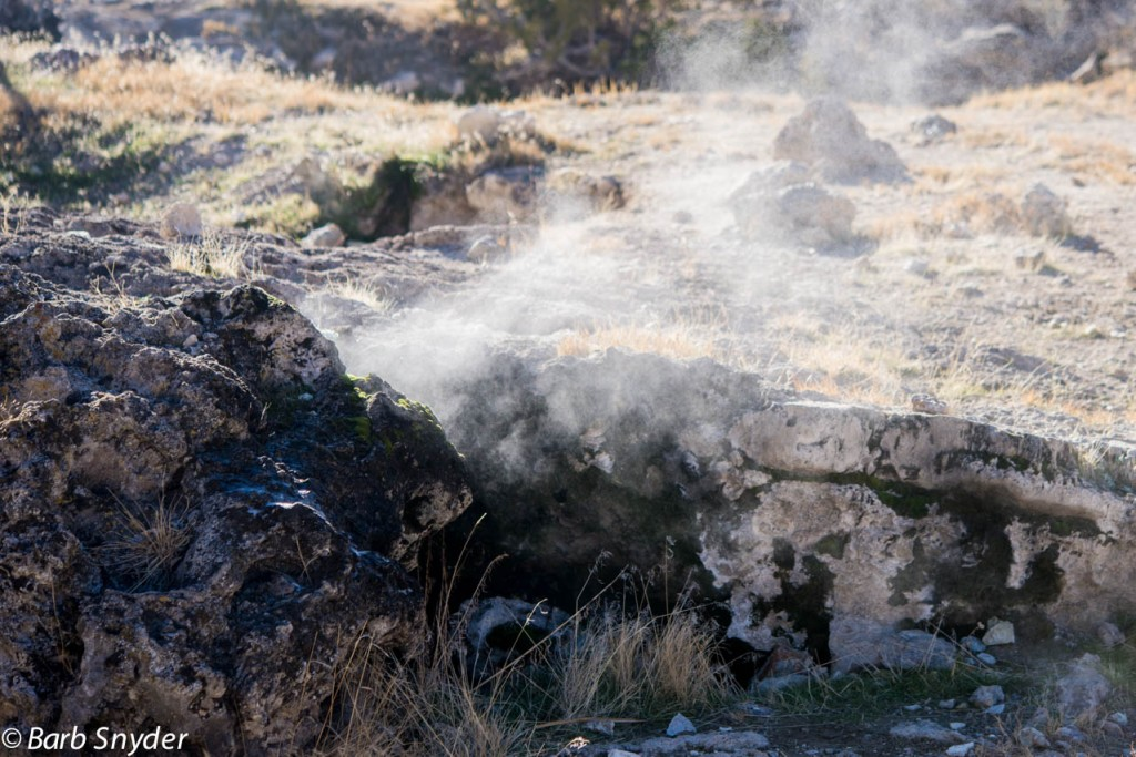 The steam was coming out of a crevice - no water showing.