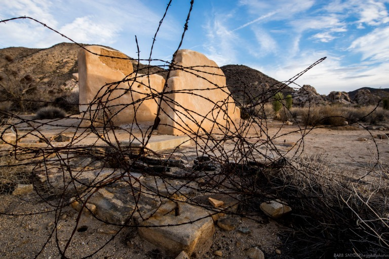 Remember all those cowboy movies with fights over barbed wire? Remnants can be found everywhere in the desert.