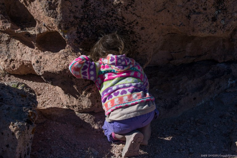 My granddaughter was more interested in the pack-rat homes!
