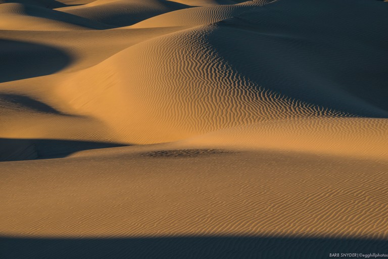 The curves of the dunes remind me of reclining nudes!