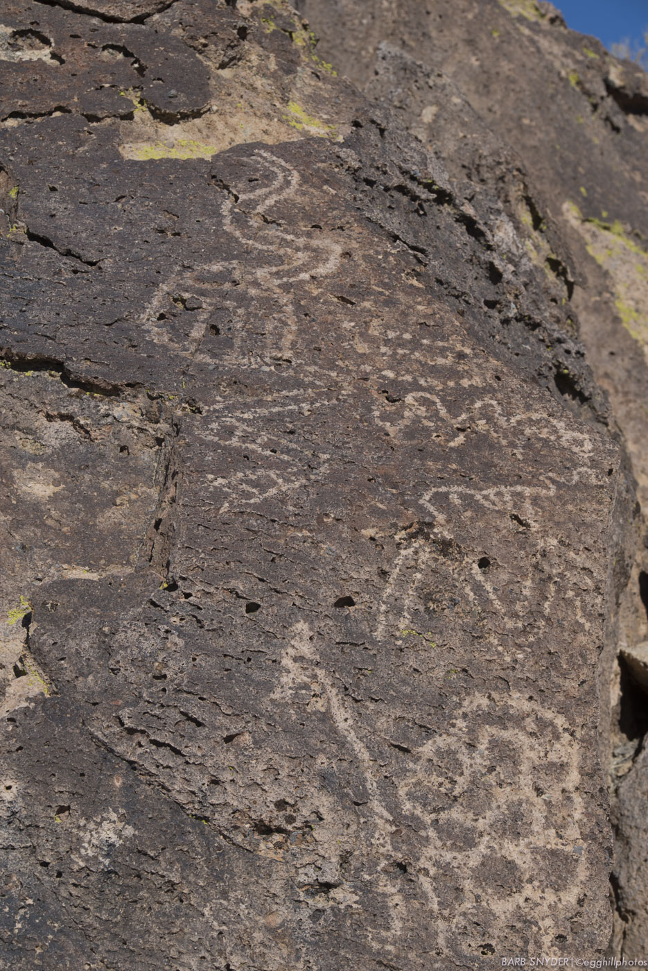 My friend Maggie is a keeper of the petroglyphs, checking them periodically. She invited me along!