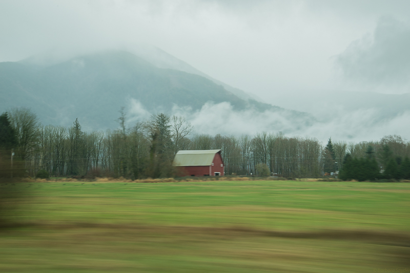 Mt.BakerHike (2 of 21)