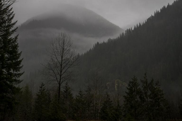 Mt.BakerHike (7 of 21)