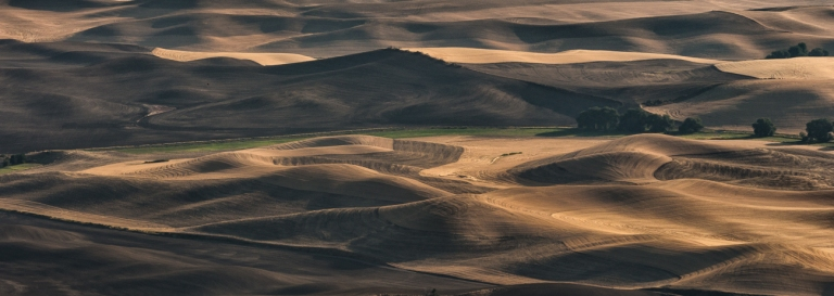 ThePalouse (9 of 14)